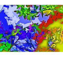 Vibrant Colorful Tree and Leaves Abstract  Photographic Print