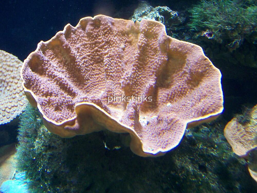 Underwater Pappadum by pinkstinks