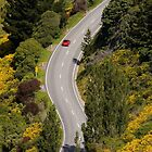 Winding road through Dyers Pass by Daniel Attema