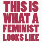 This Is What A Feminist Looks Like by CarbonClothing