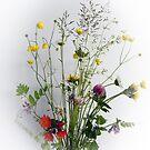 Wildflower Bouquet by Martha Medford