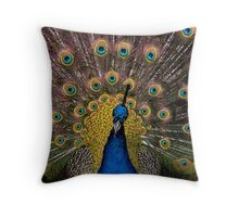 All my finery Throw Pillow