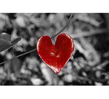 Love Heart2 (horizontal) Photographic Print