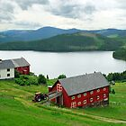 Fagernes - Norway by Arie Koene