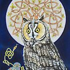 Long Eared Owl  by Beth Clark-McDonal