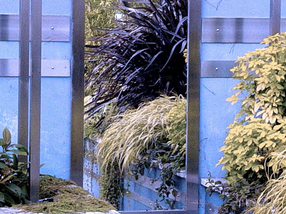 Reflection in Blue by CarolineMannix
