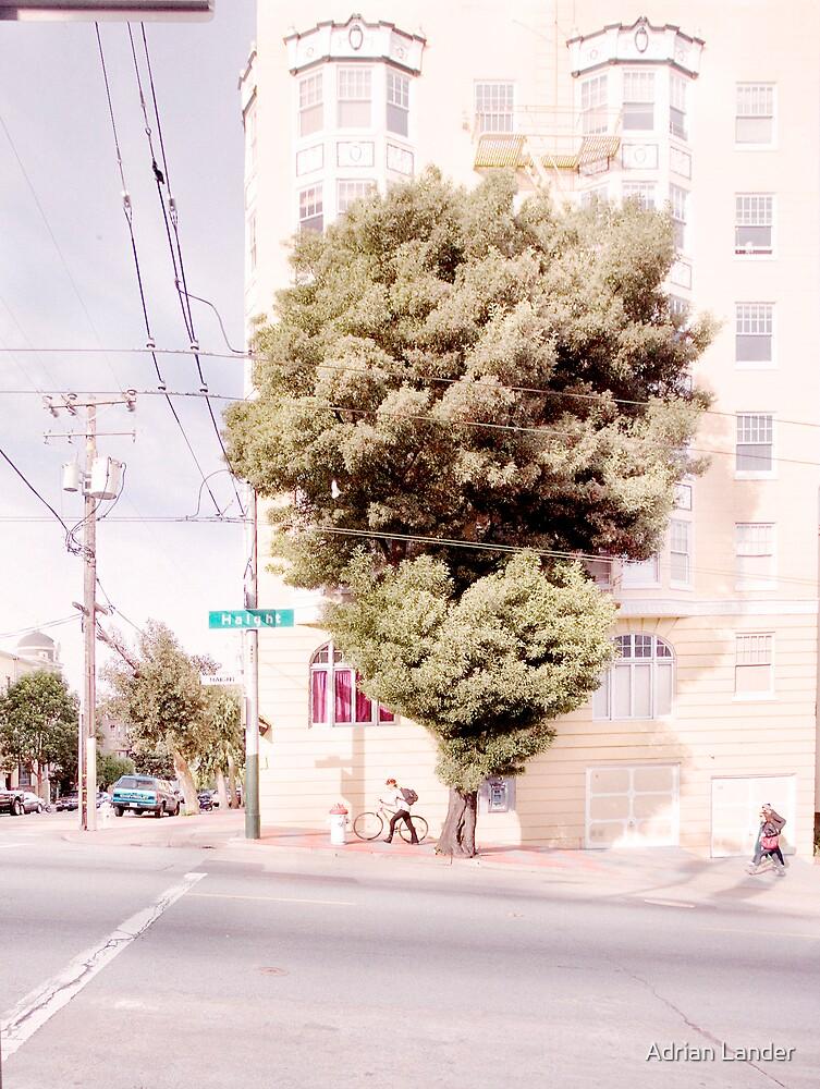 San francisco - Haight Street by Adrian Lander