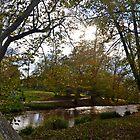 Beautiful Sidford, Devon UK by lynn carter