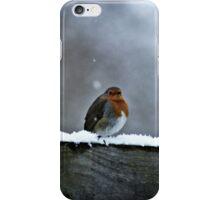 Solitary Robin iPhone Case/Skin