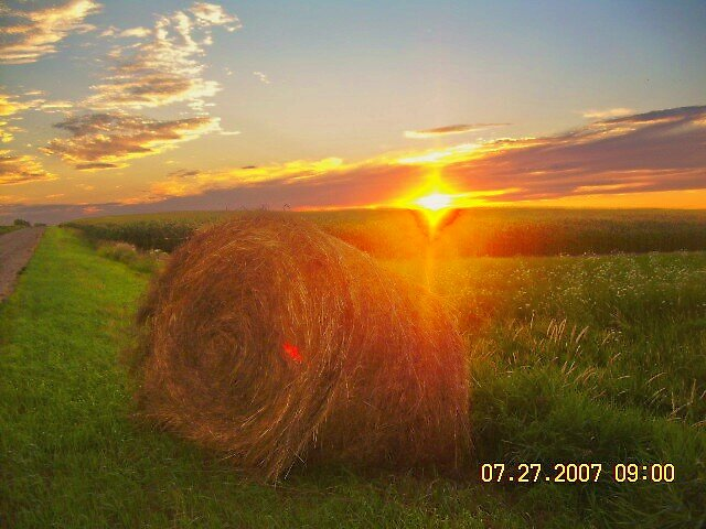 hay bail in sunset by Jaclyn Clemens