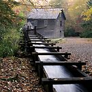 Mingus Mill II by Gary L   Suddath