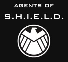 Agents of S.H.I.E.L.D Level 6 by prunstedler