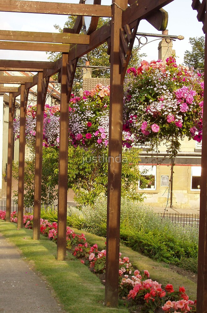 Hanging Baskets by justlinda