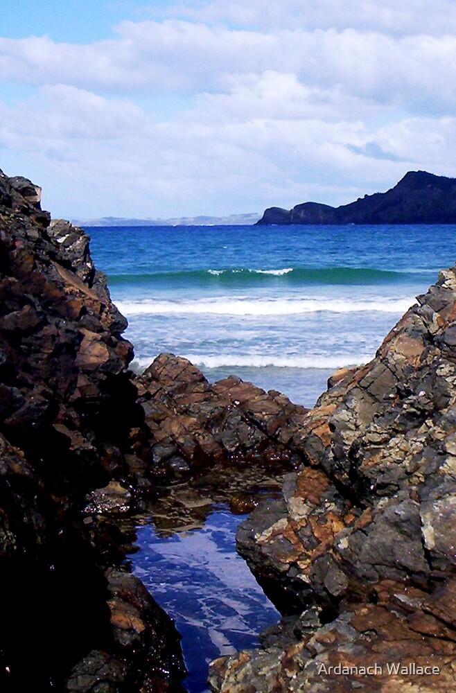 Matauri Bay by Ardanach Wallace