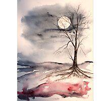 Moon Light Photographic Print