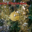 Merry Christmass by Barry Robinson