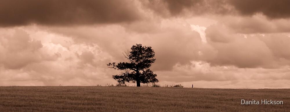 All Alone - Rustic by Danita Hickson