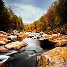 Wilson Creek Wanderings by Miles Moody