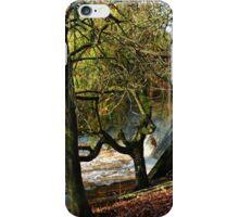 Weeping Willow at Sidford,Devon.UK iPhone Case/Skin