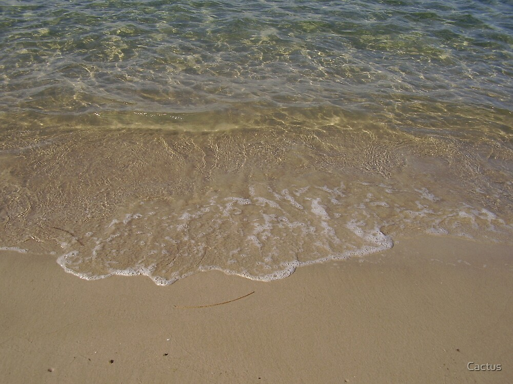 Clear Gold Coast Waters, Queensland, Australia by Cactus