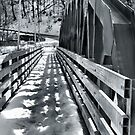 Bridge over Ashtabula River by Sheri Nye