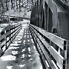 Bridge over Ashtabula River by Sheri Nye