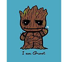 Hello Groot Photographic Print