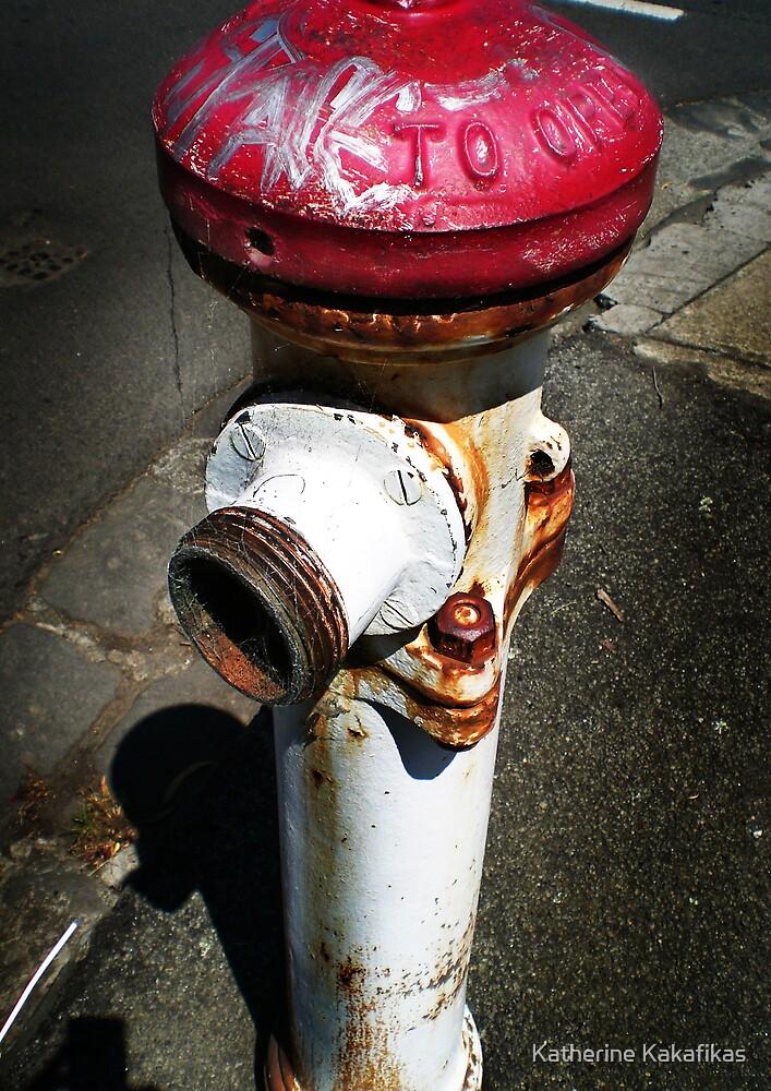 Hydrant by Katherine Kakafikas
