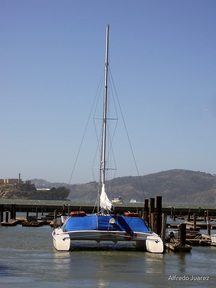 The Catamaran by Alfredo Juarez