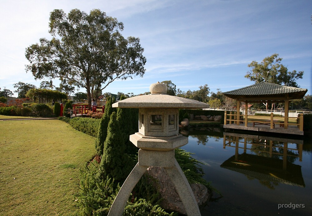 Wellington Japanese Garden by prodgers