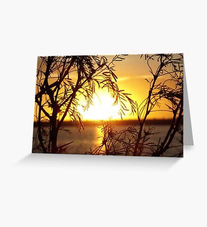 Mesquite Sunrise Greeting Card