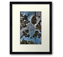 Can't See the Forest... Framed Print