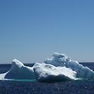 Iceberg ...near the beach by rog99