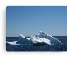 Iceberg ...near the beach Canvas Print