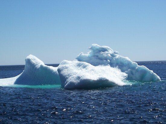 Iceberg...on close up by rog99