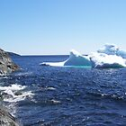 Iceberg...at the beach by rog99