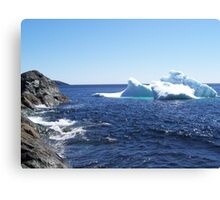 Iceberg...at the beach Canvas Print
