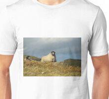 Swaledales Unisex T-Shirt
