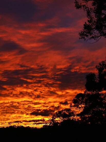 Sunset Spectacular 31st July 2007 by webgrrl