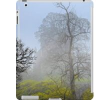 Castle Campbell in the fog iPad Case/Skin
