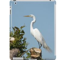 Elegant Great Egret iPad Case/Skin