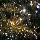 Merry Christmas by Barry Robinson