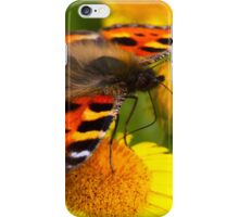 Small Tortoiseshell Butterfly iPhone Case/Skin
