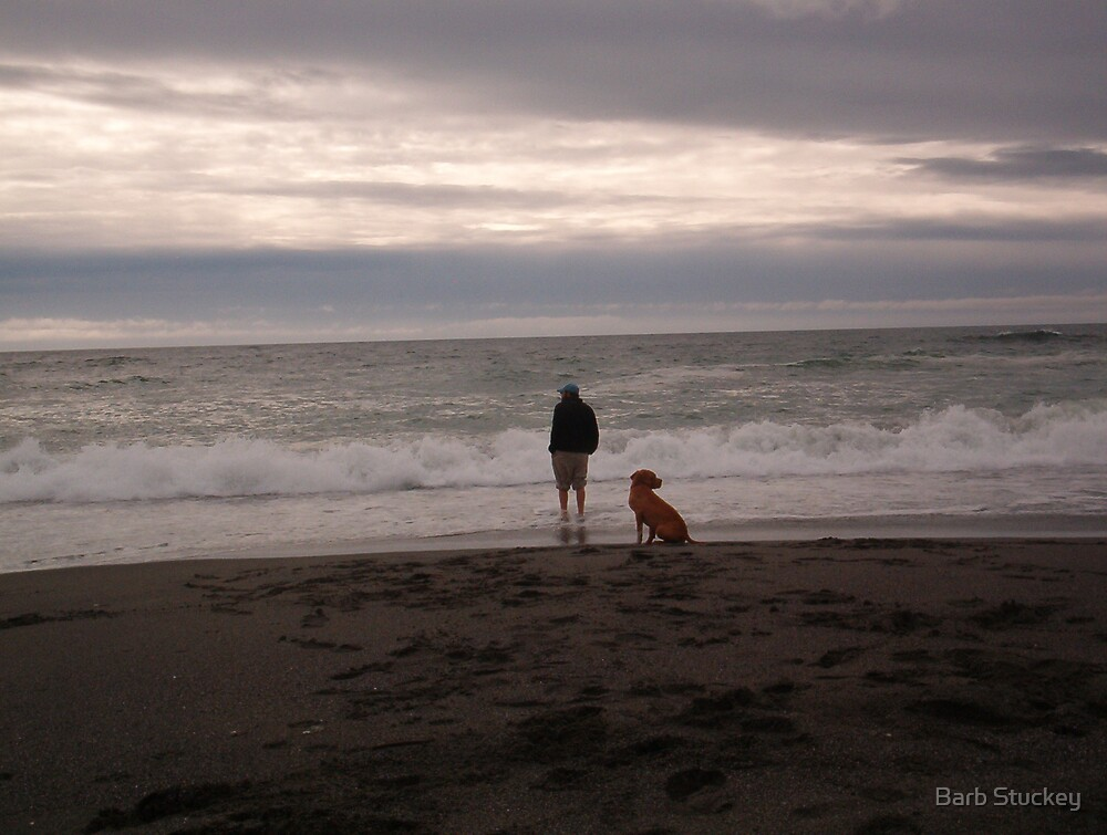 Happy Dogs Come from California! by Barb Stuckey