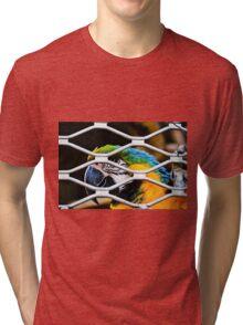 ara Tri-blend T-Shirt