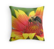 Hunt for Honey Throw Pillow