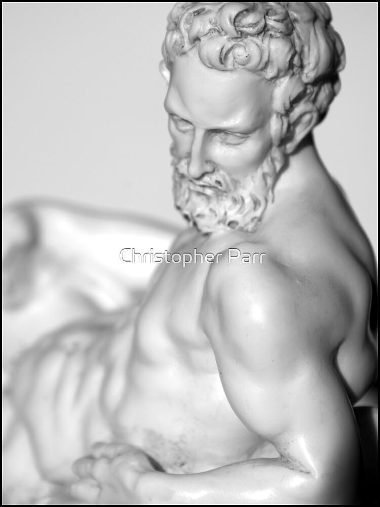 Michelangelo's Dusk by Christopher Parr