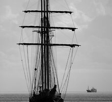 Tall Ship Ahoy! by Wrayzo