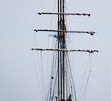 Tall Ship In Bangor by Wrayzo