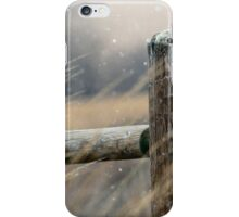 Snow in the Park iPhone Case/Skin